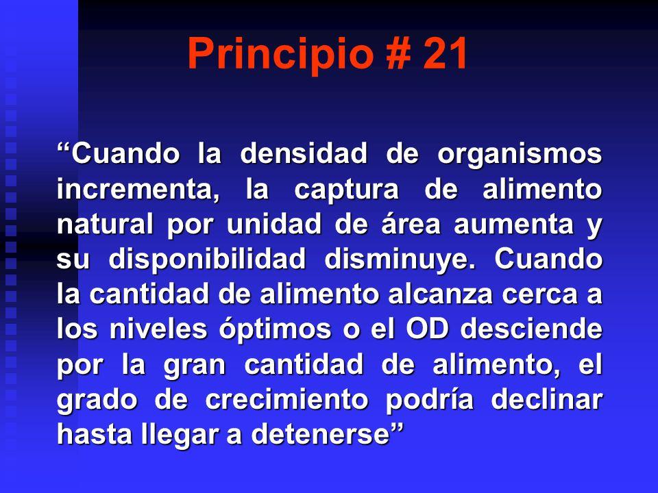 Principio # 21