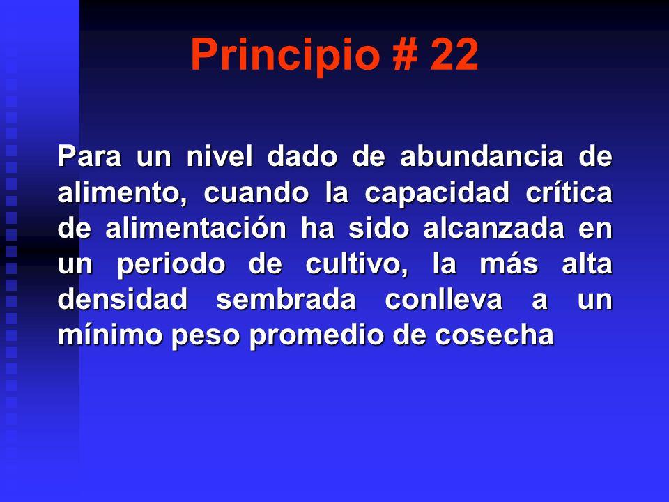 Principio # 22
