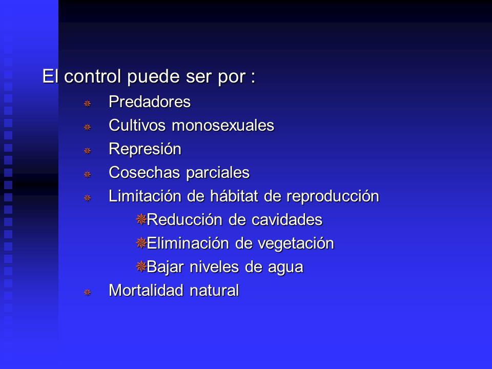 El control puede ser por :