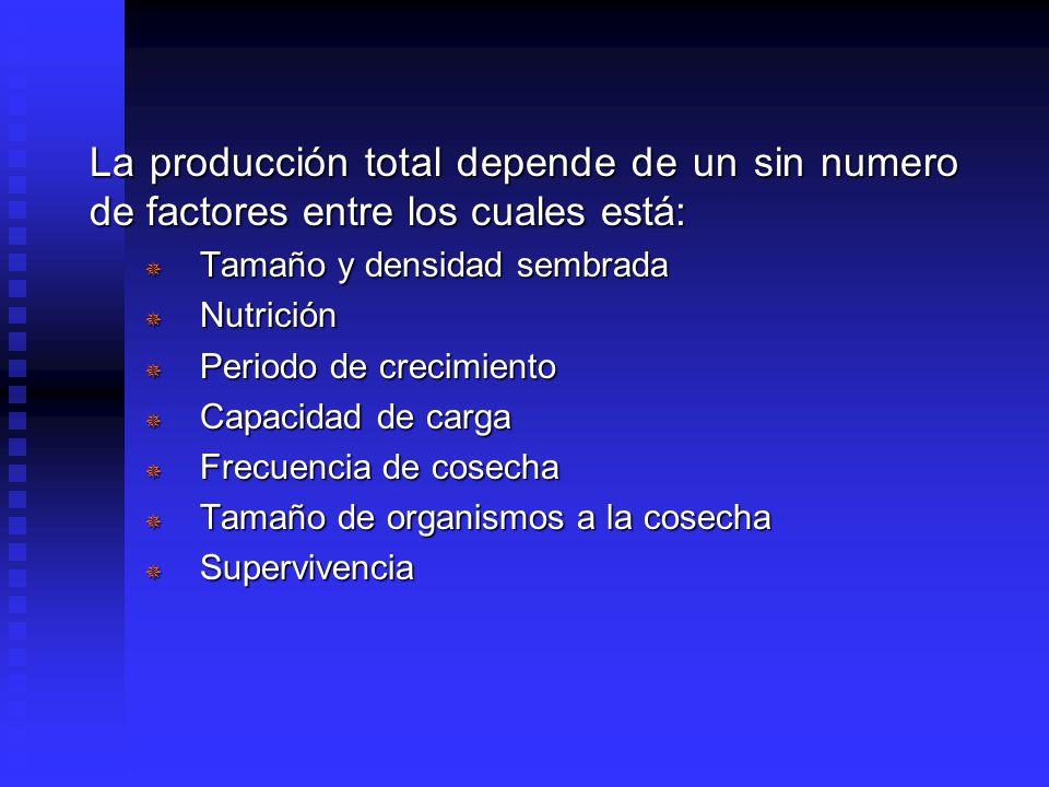 La producción total depende de un sin numero de factores entre los cuales está: