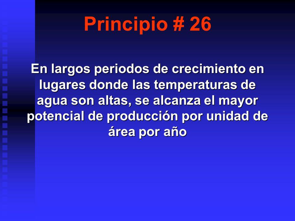 Principio # 26