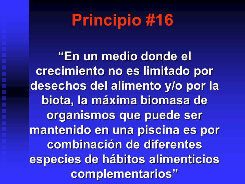 Principio #16