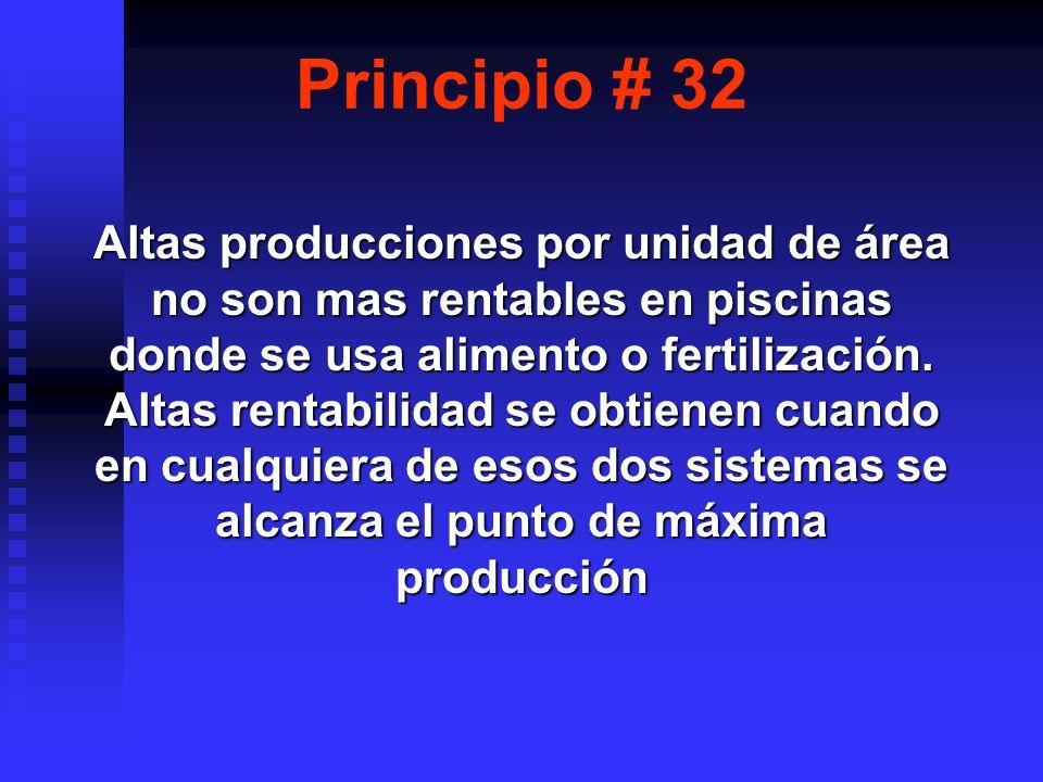Principio # 32