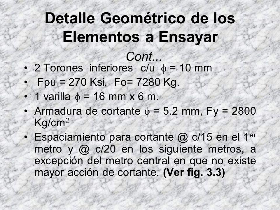 Detalle Geométrico de los Elementos a Ensayar Cont...