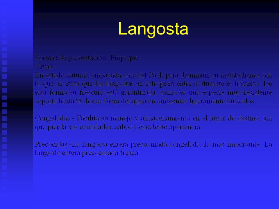 Langosta