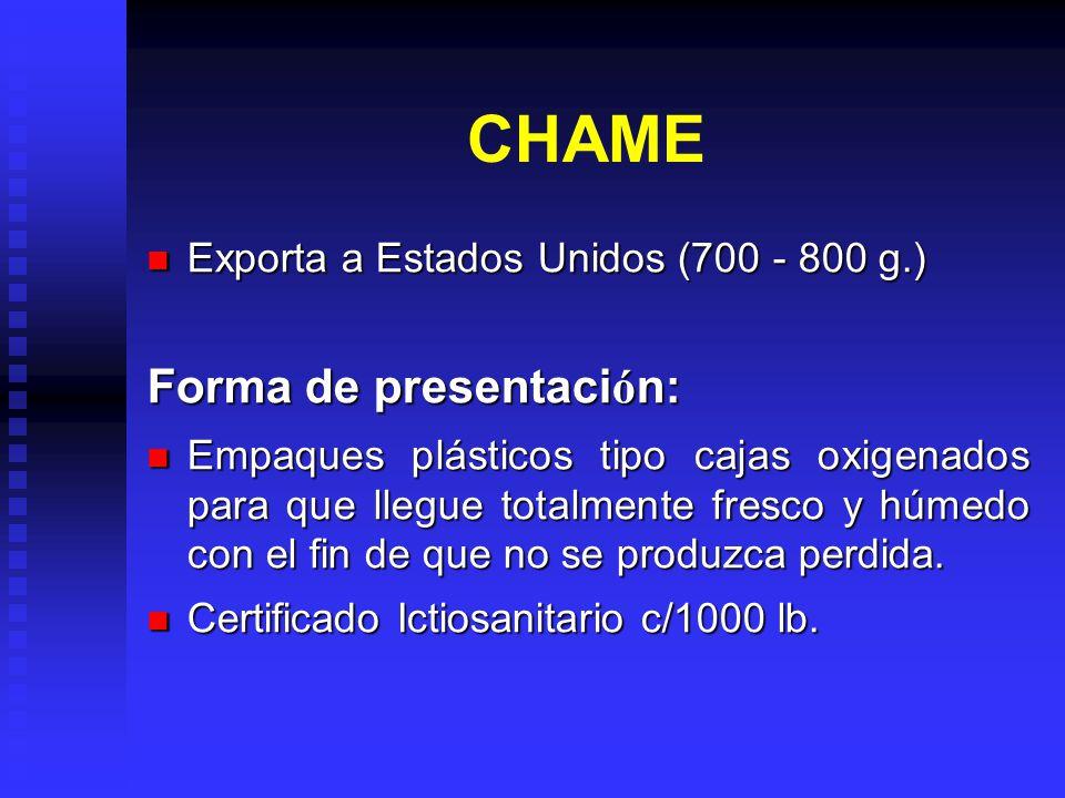 CHAME Forma de presentación: Exporta a Estados Unidos (700 - 800 g.)