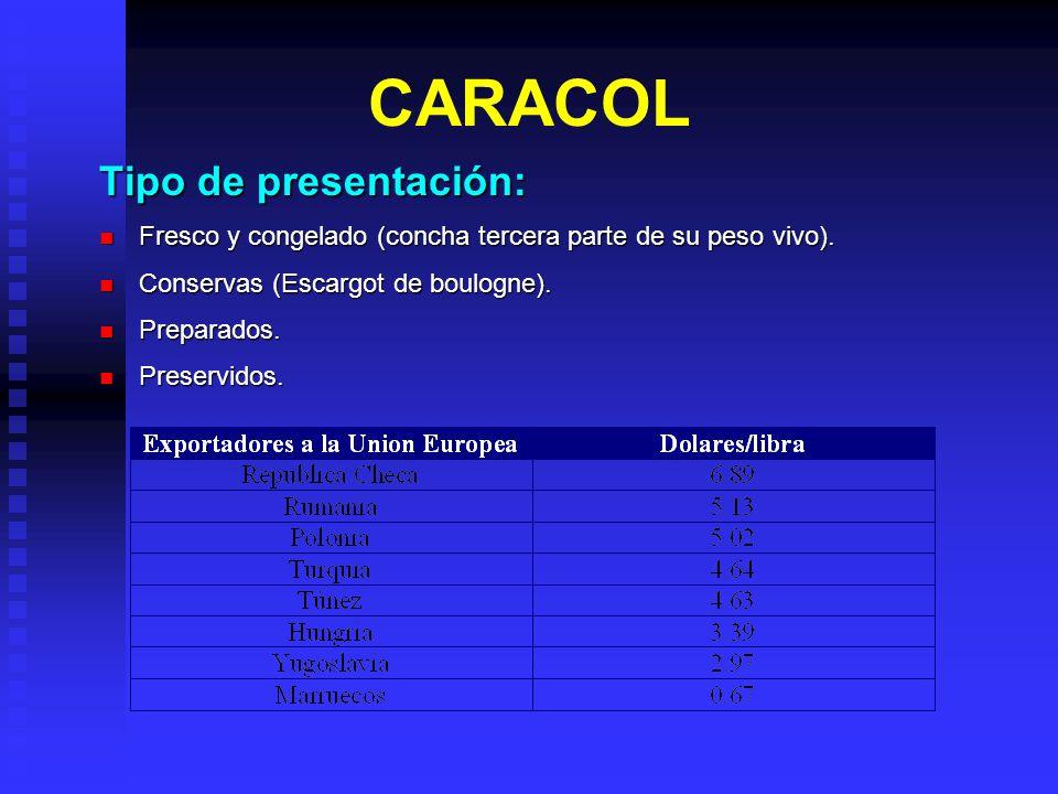 CARACOL Tipo de presentación: