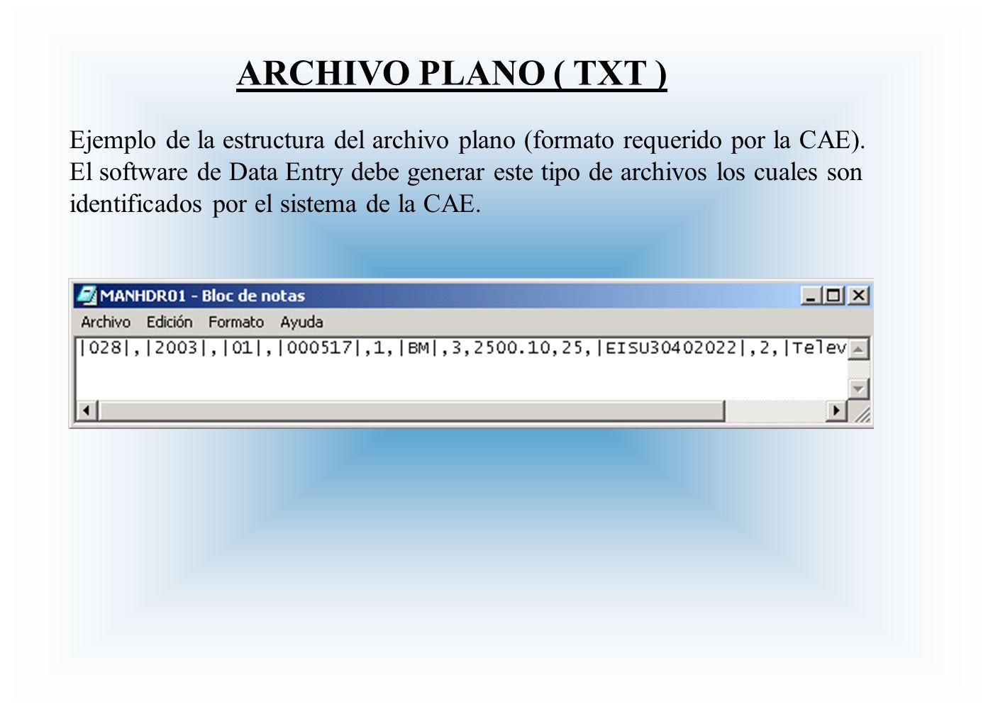 ARCHIVO PLANO ( TXT )