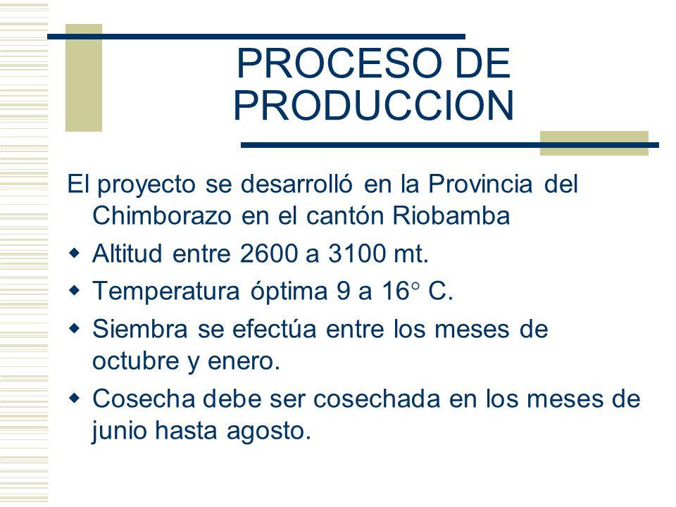 PROCESO DE PRODUCCION El proyecto se desarrolló en la Provincia del Chimborazo en el cantón Riobamba.