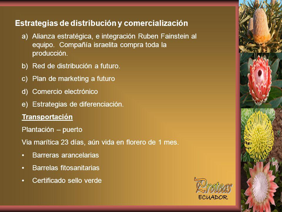 Proteas Estrategias de distribución y comercialización