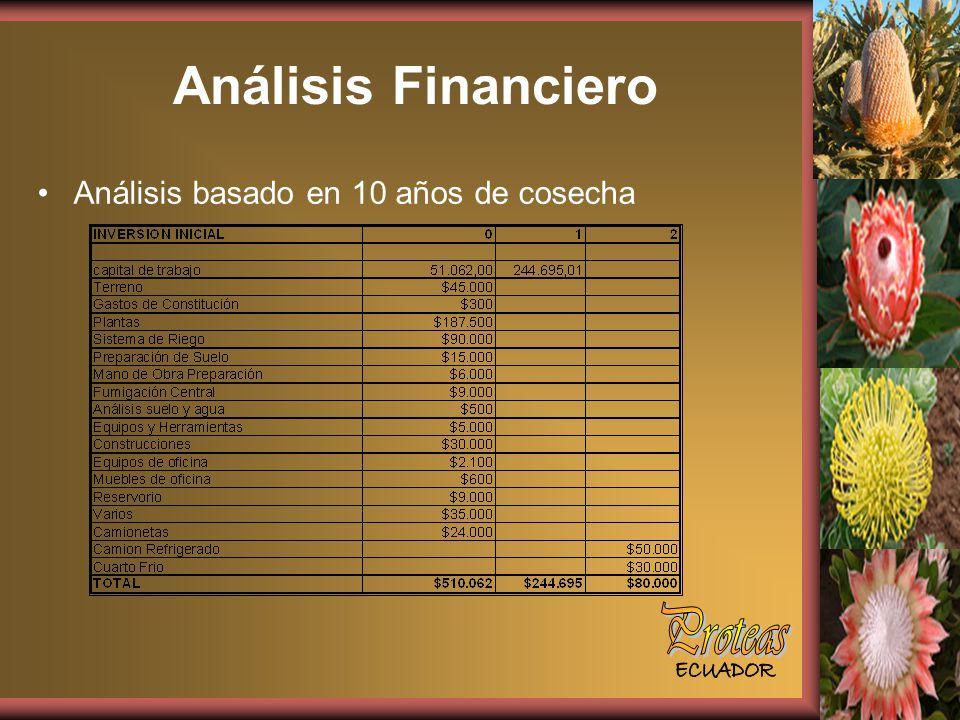 Análisis Financiero Proteas Análisis basado en 10 años de cosecha
