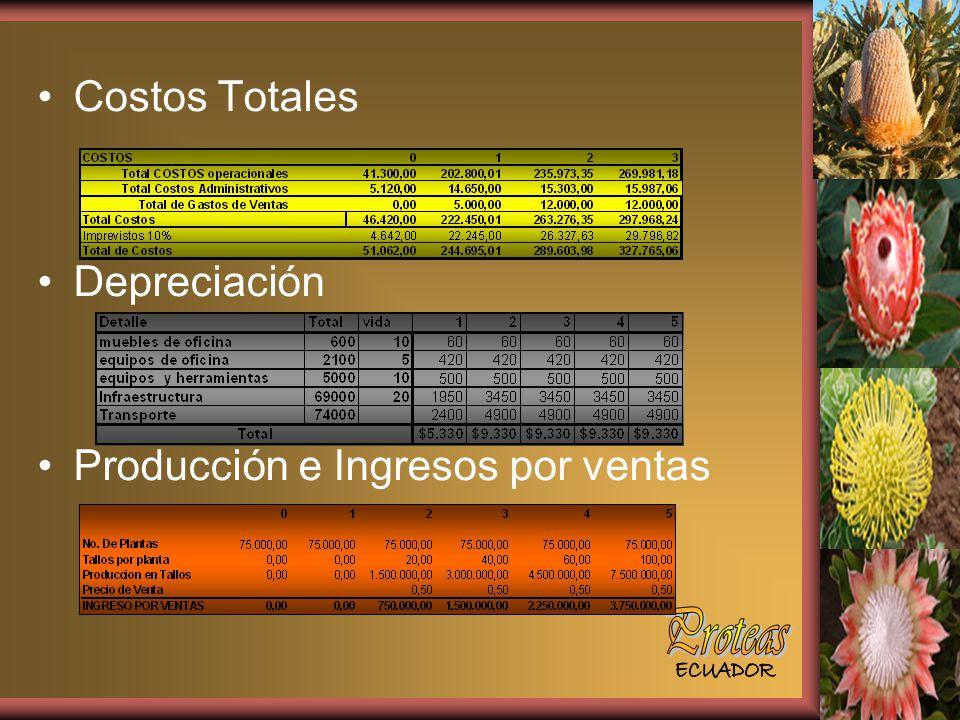 Proteas Costos Totales Depreciación Producción e Ingresos por ventas