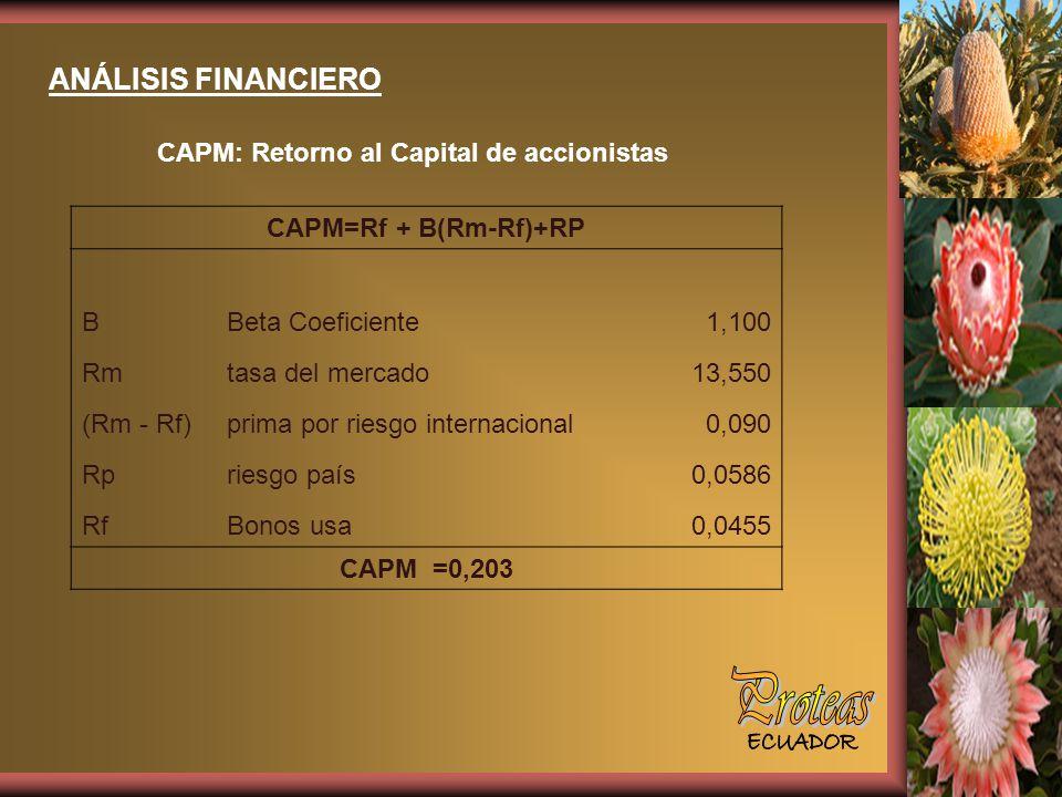 Proteas ANÁLISIS FINANCIERO CAPM: Retorno al Capital de accionistas