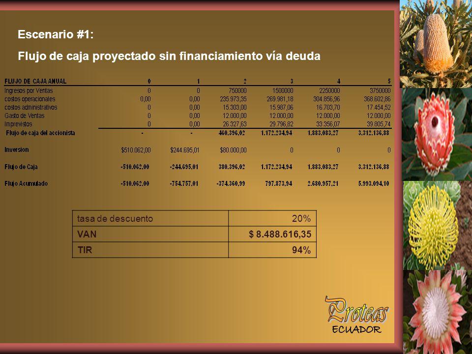 Escenario #1: Flujo de caja proyectado sin financiamiento vía deuda. tasa de descuento. 20% VAN.