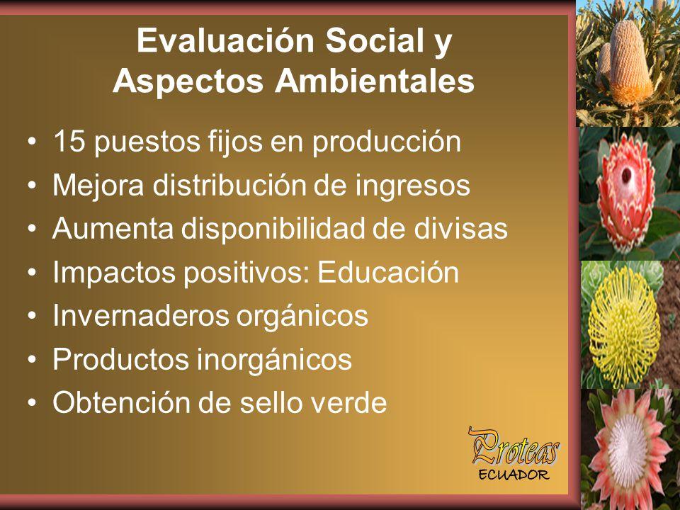 Evaluación Social y Aspectos Ambientales