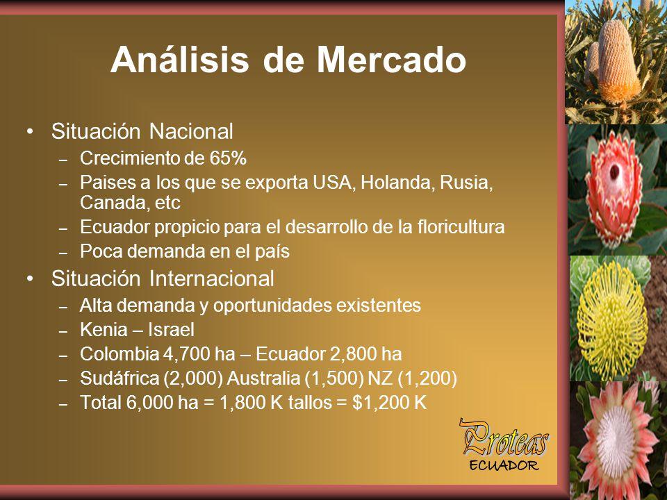 Análisis de Mercado Proteas Situación Nacional Situación Internacional