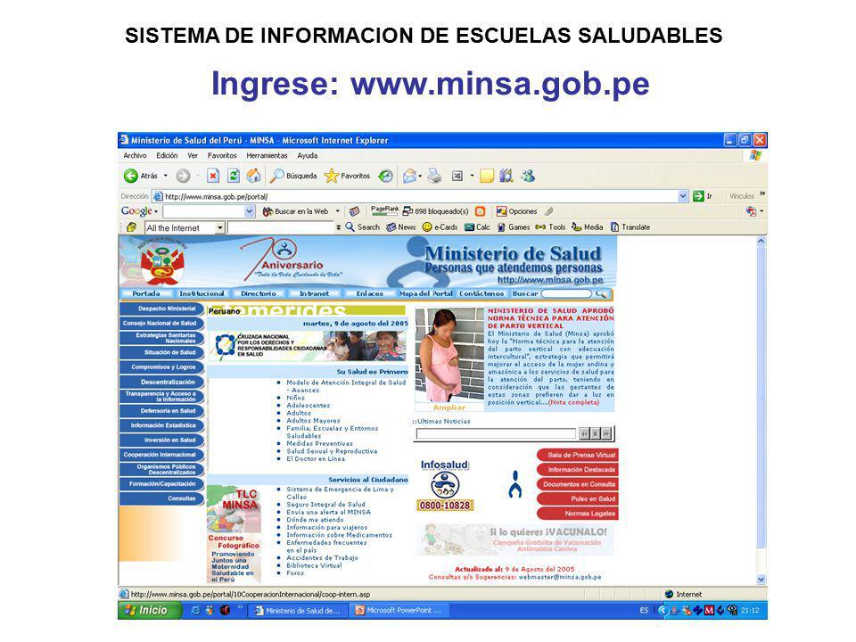 Ingrese: www.minsa.gob.pe