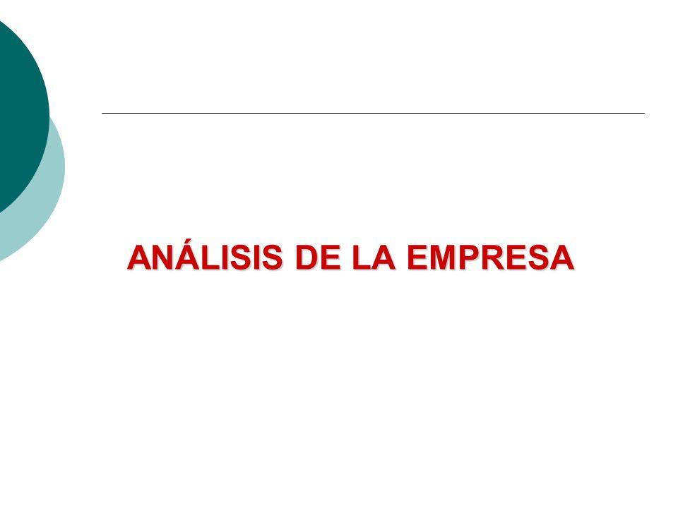 ANÁLISIS DE LA EMPRESA