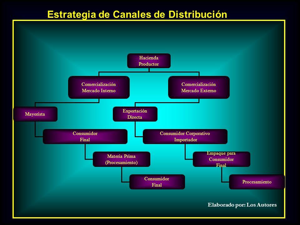 Estrategia de Canales de Distribución