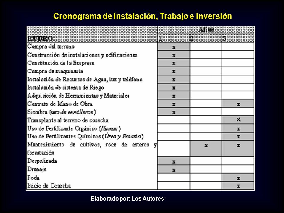 Cronograma de Instalación, Trabajo e Inversión