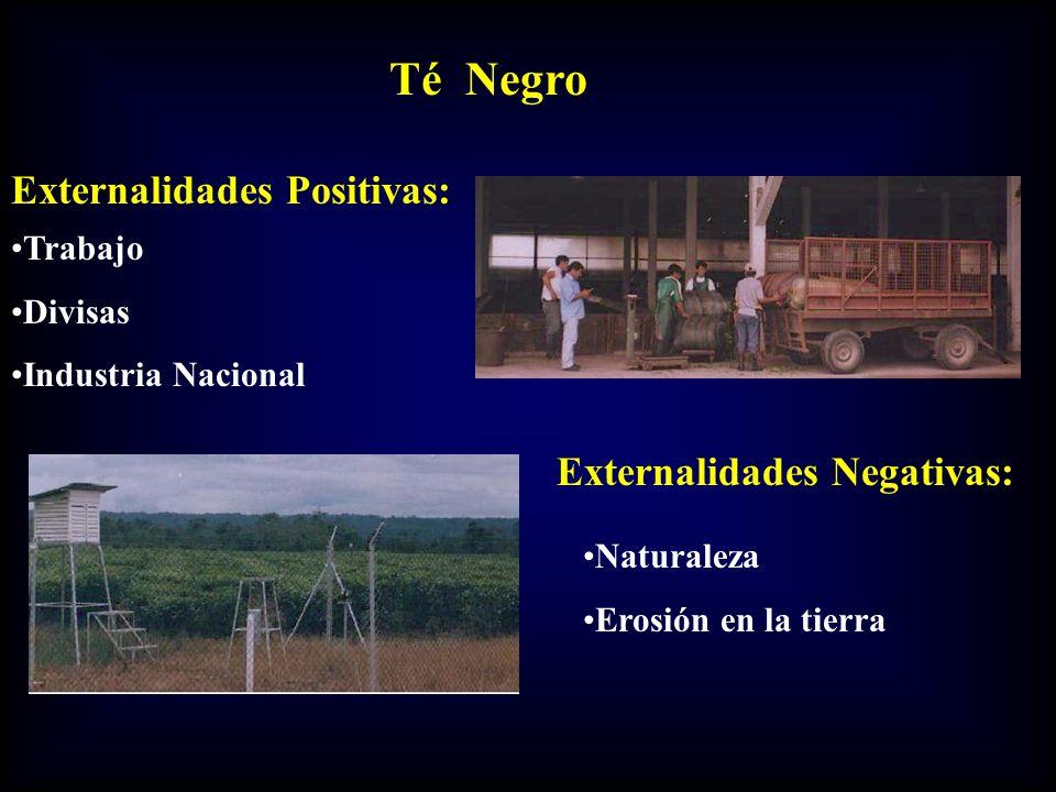 Té Negro Externalidades Positivas: Externalidades Negativas: Trabajo