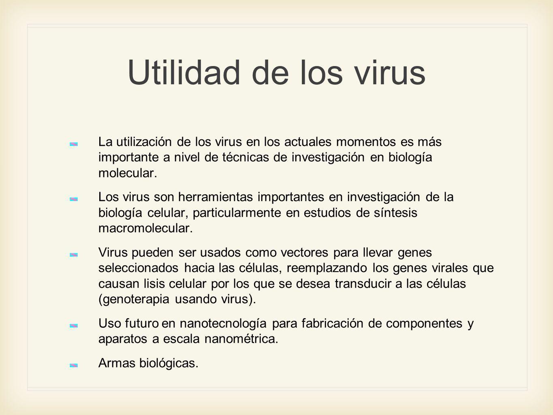 Utilidad de los virus