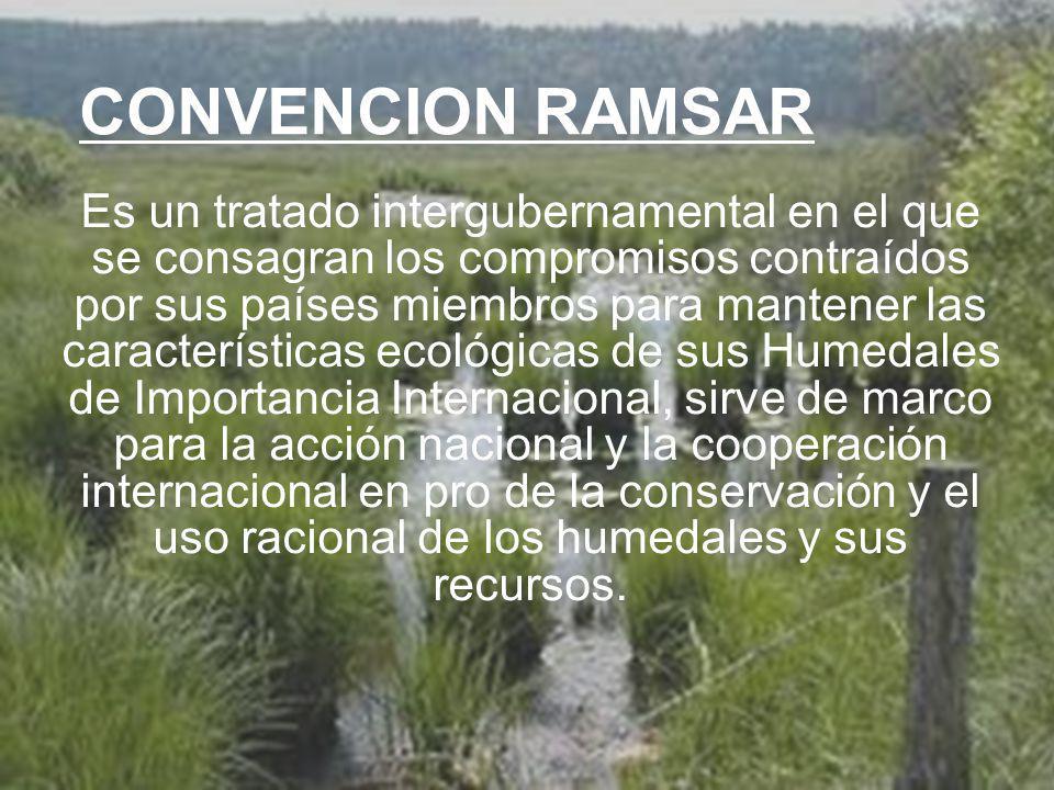 CONVENCION RAMSAR