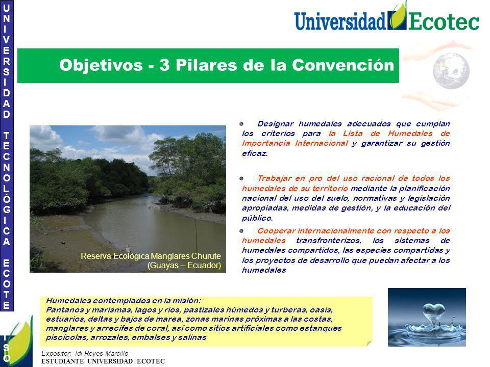 Objetivos - 3 Pilares de la Convención
