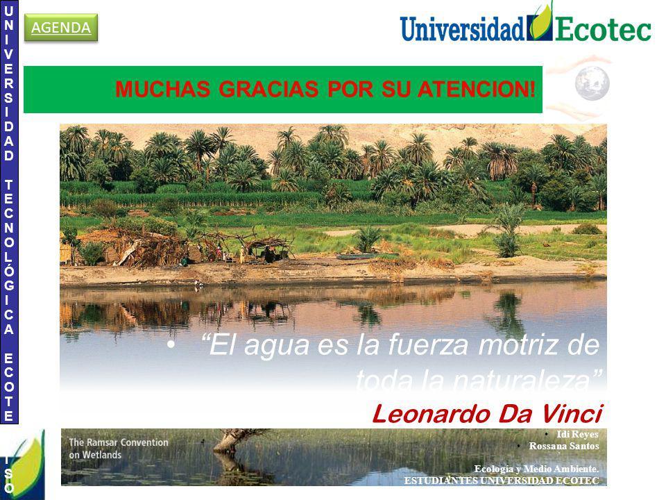 El agua es la fuerza motriz de toda la naturaleza Leonardo Da Vinci