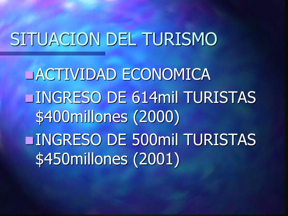 SITUACION DEL TURISMO ACTIVIDAD ECONOMICA
