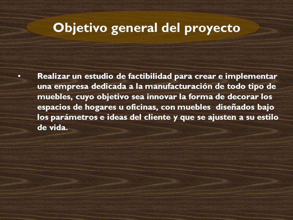 Objetivo general del proyecto