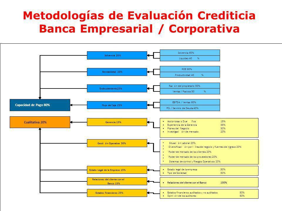 Metodologías de Evaluación Crediticia Banca Empresarial / Corporativa