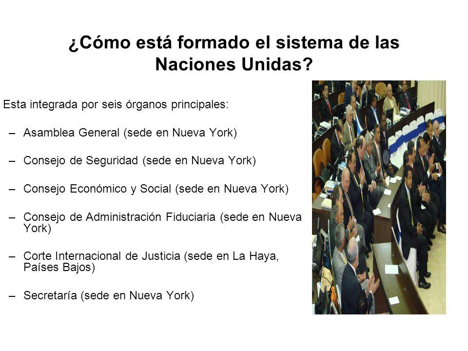 ¿Cómo está formado el sistema de las Naciones Unidas