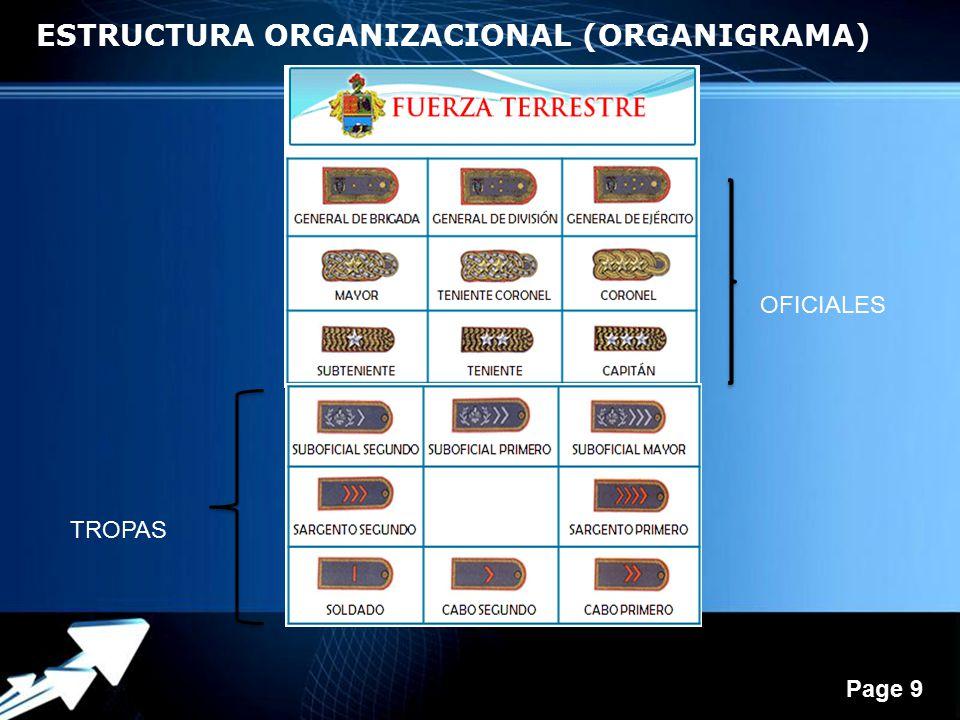 ESTRUCTURA ORGANIZACIONAL (ORGANIGRAMA)