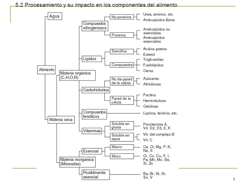 5.2 Procesamiento y su impacto en los componentes del alimento