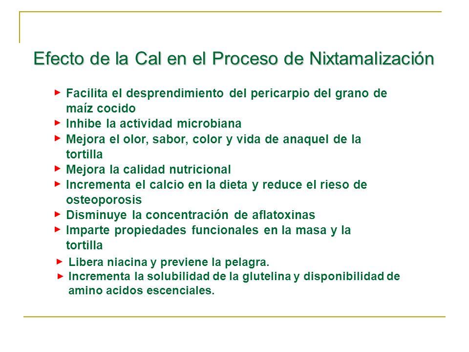 Efecto de la Cal en el Proceso de Nixtamalización