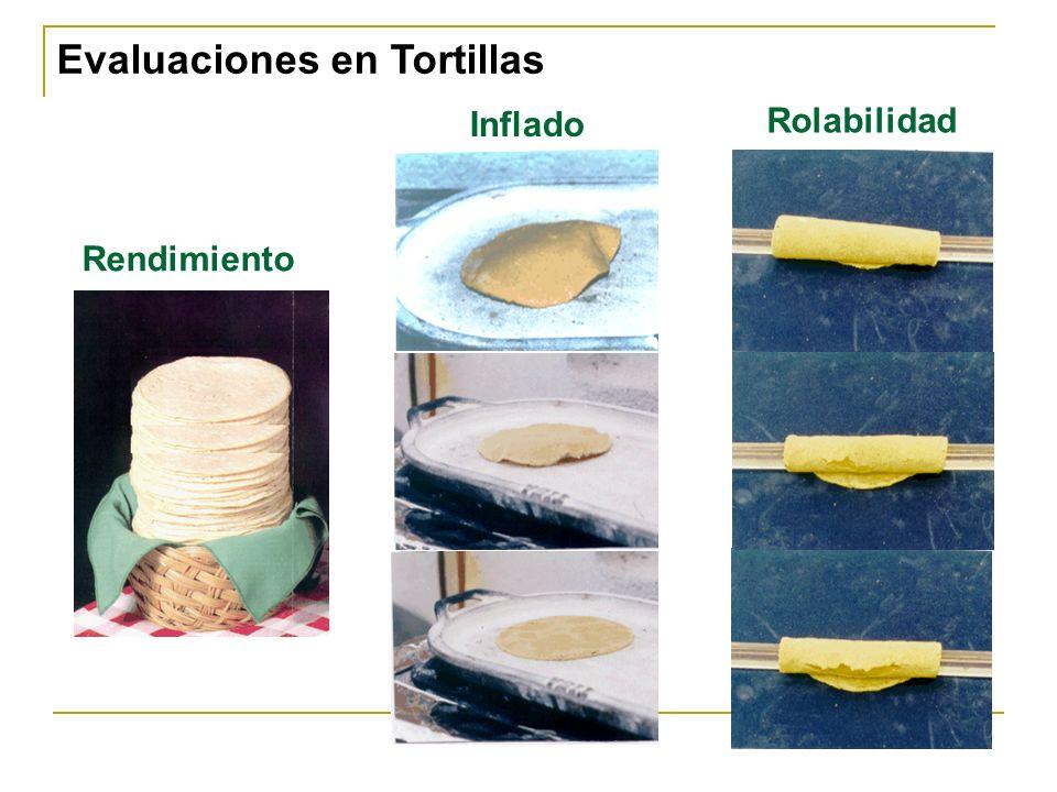 Evaluaciones en Tortillas