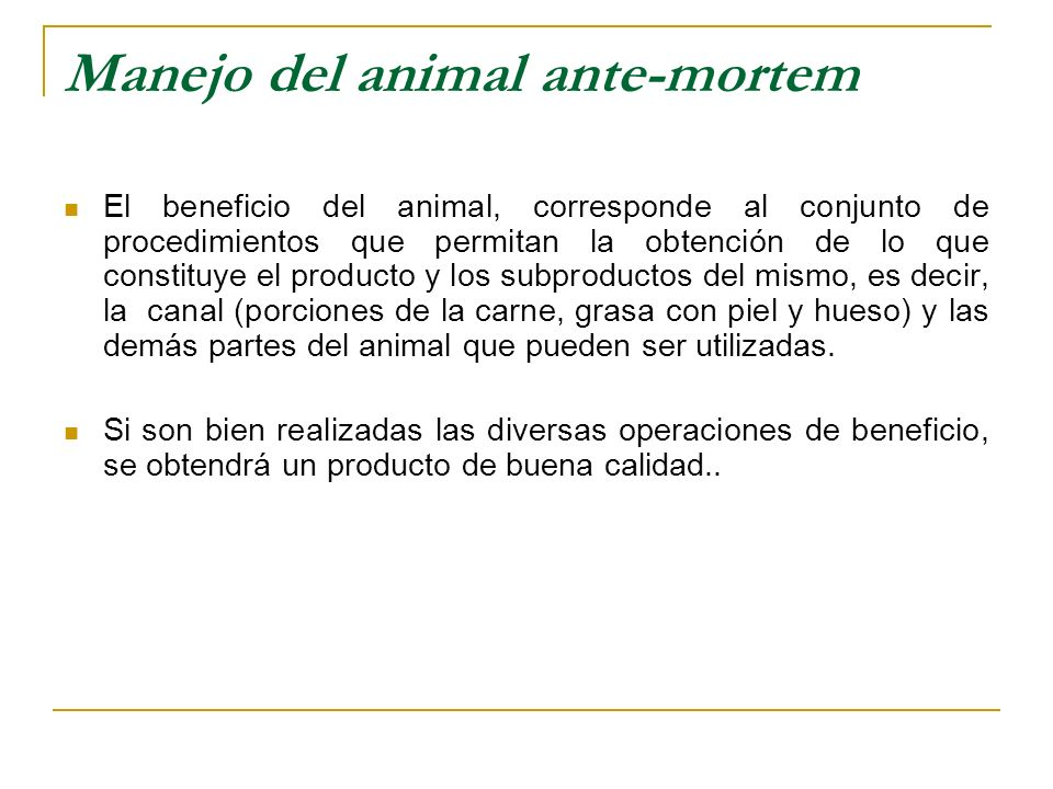 Manejo del animal ante-mortem