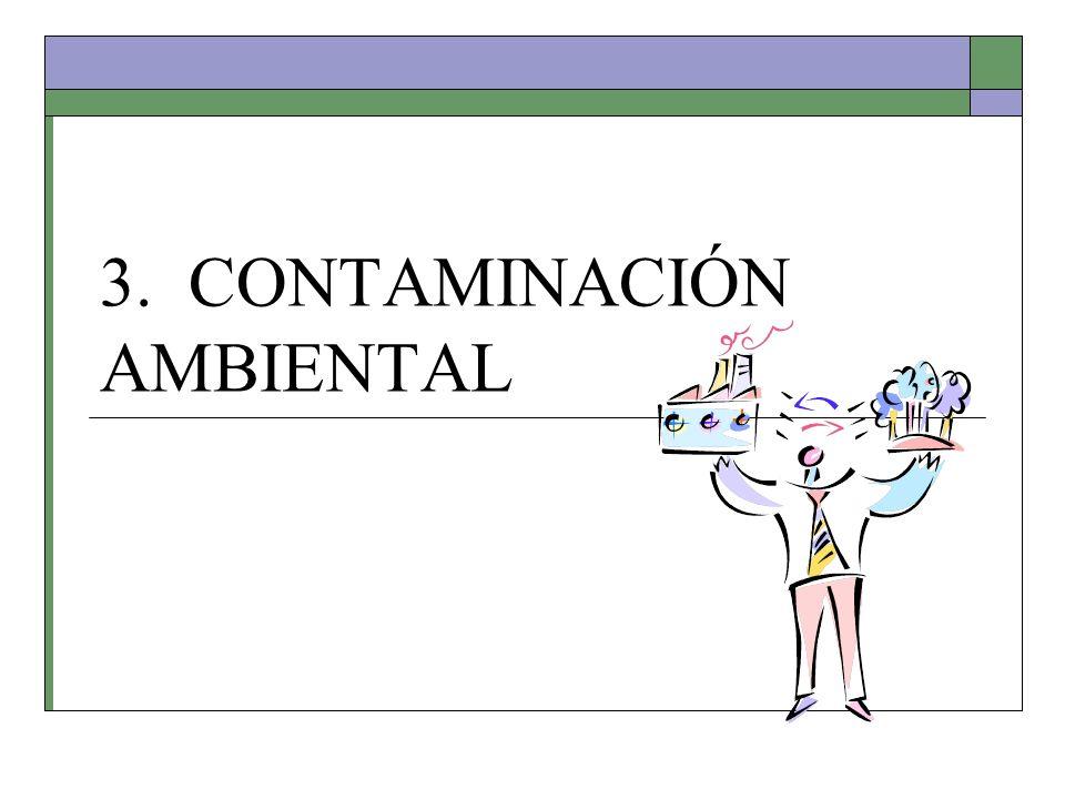 3. CONTAMINACIÓN AMBIENTAL