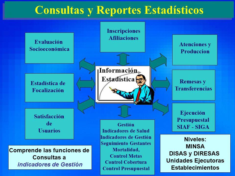 Consultas y Reportes Estadísticos