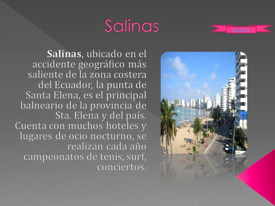 Salinas RETORNO.