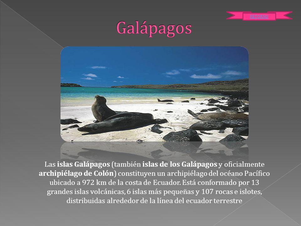 Galápagos RETORNO.