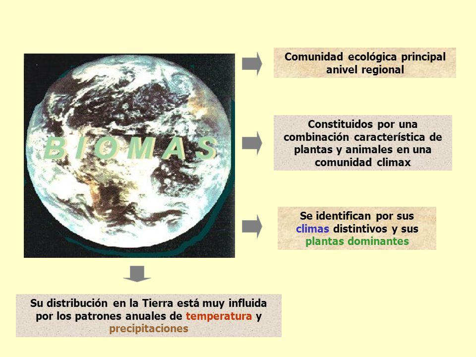 Comunidad ecológica principal anivel regional