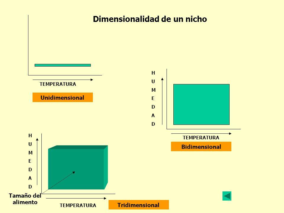 Dimensionalidad de un nicho