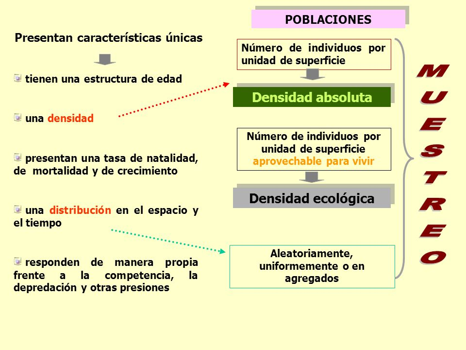 MUESTREO Densidad absoluta Densidad ecológica POBLACIONES