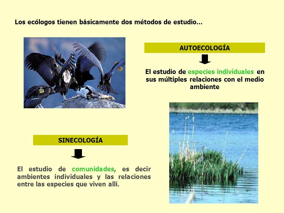 Los ecólogos tienen básicamente dos métodos de estudio...