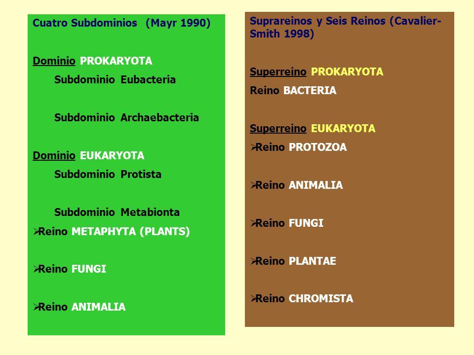 Cuatro Subdominios (Mayr 1990)