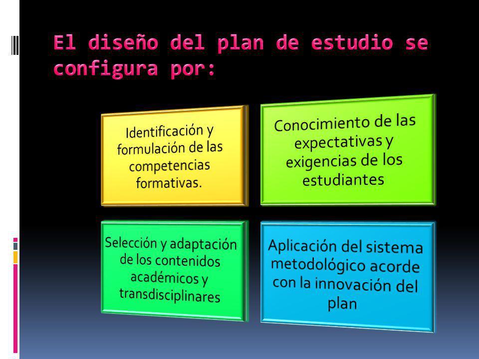 El diseño del plan de estudio se configura por: