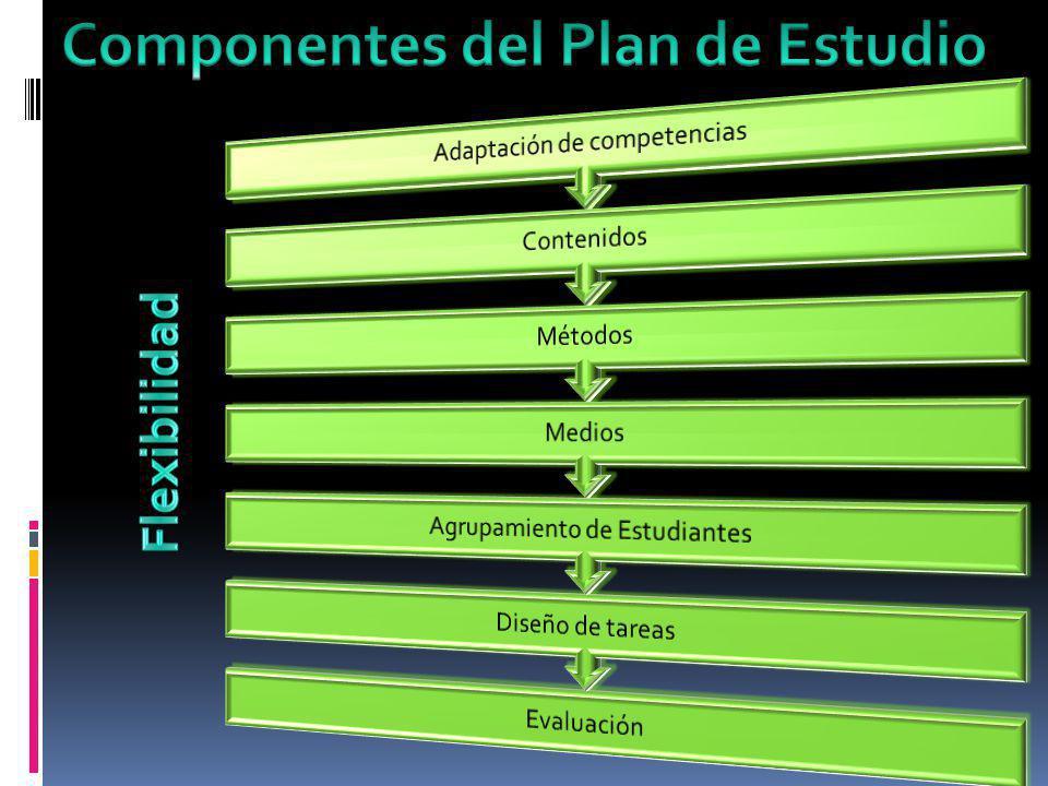 Componentes del Plan de Estudio