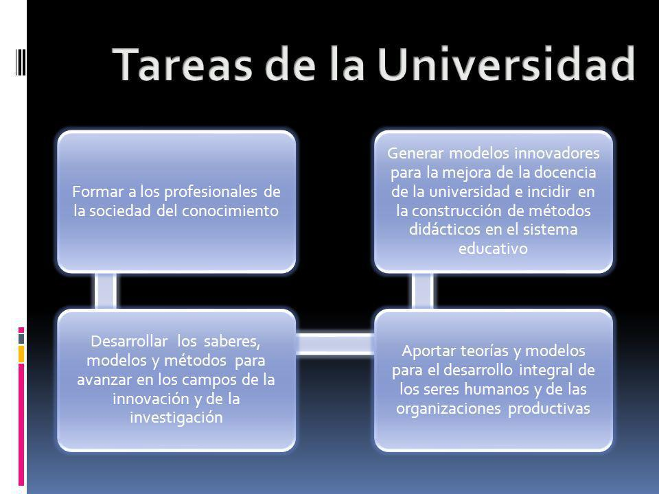 Tareas de la Universidad